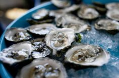 Island Creek Oyster Bar, Comm Ave - lots of Terry Theise Selections and Mass oysters - East Coast Chic