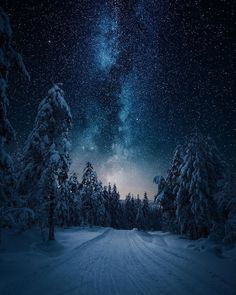 ✨✨Winter ❄️Starry Sky's 🌌 in Norway 🇳🇴✨✨ Milky Way Photography, Landscape Photography Tips, Nature Photography, Photography Hacks, Star Photography, Photography Classes, Photography Business, Creative Photography, Photography Timeline