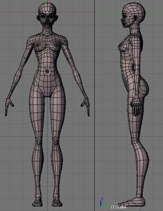 Just getting back into blender and was inspired by the new mmo coming out (Star Wars The Old Republic). So I want to see if I can make some cool little movies and learn the basics of blender from modelling, animation and… Character Model Sheet, Character Modeling, 3d Character, Character Design, Wireframe, Human Anatomy, 3d Anatomy, Anatomy Reference, Female Reference