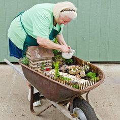 Plant Up A Wheelbarrow Fairy Garden