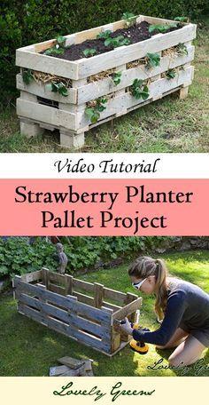 JARDINERAS DE PALETAS DE EMBARQUES New Video Tutorial: How to Make a Strawberry Pallet Planter ~ Lovely Greens