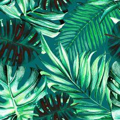 Tropical Wallpaper - Sample