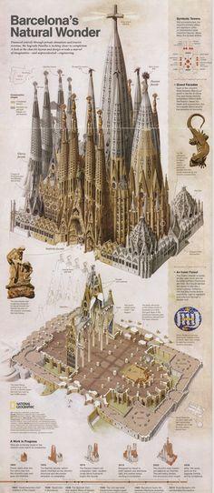 Barcelona Natural Wonder