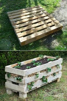 DIY single pallet into a vertical strawberry planter.