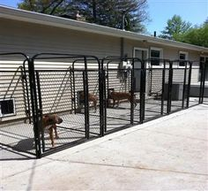 Inside / Outside Multiple Dog Runs from K9 Kennels