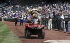 """Seattle Mariners mascot, """"Moose,"""" tears it up on his ATV as the team takes on the Cleveland Indians."""