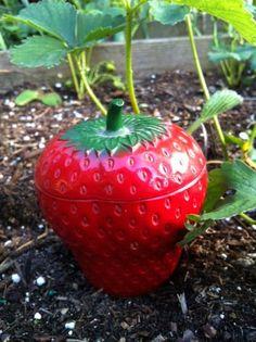 Strawberry Jam Jar by valleyvintage on Etsy, $10.00