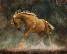 Wild Palomino Horse