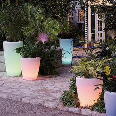 Fancy - Solar Illuminated Planters