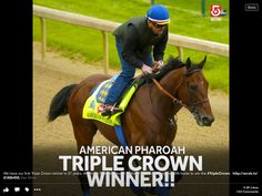 Yes!!!!!! What a winner!!!