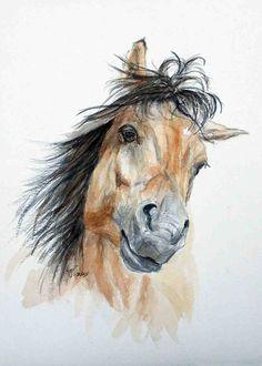 I Want To Play - a beautiful buckskin horse who wants to play - 8 x 10 print of my orginal watercolor. $10.00, via Etsy.
