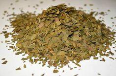NEW Premium Quality GINKGO BILOBA Memory Tea BULK Leaves Herb FREE Shipping #BuyfromSpain