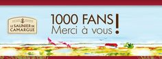 #atnetplanet #Facebook #Salins #SaunierDeCamargue #cover