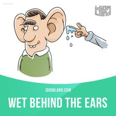 """Wet behind the ears"" means ""young and inexperienced"". Example: John is too young to take on a job like this! He's still wet behind the ears!"