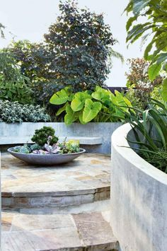 garden-curved-concrete-walls-peter-nixon-feb12-