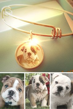 Loving those puppy eyes. Never forget the ones you love with a personalized Alex and Ani inspired stackable bracelet. <3 #UniquelyYours <3