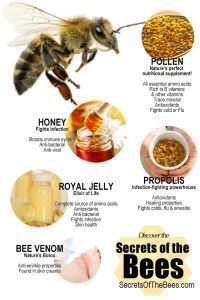 The Best honey, Royal Jelly, pollen, bee bread, propolis from Kyrgyzstan check link