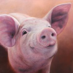 Hey, I found this really awesome Etsy listing at http://www.etsy.com/listing/161848785/sam-dolman-limited-edition-pig-print