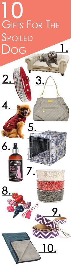 Spoil your dog even more for the holidays with our selection of fashionable dog apparel, carriers, collars and more.