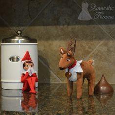 Reindeer poop ((LOL!))
