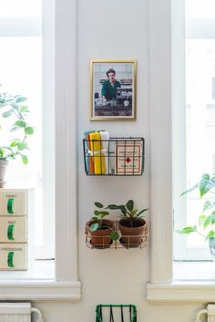 A great use of a small space. What other alternative items might work on your wall? #plants #alternativestorage #walldecor