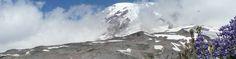 Mount Rainier peeks through clouds, viewed across subalpine wildflowers and glacial moraine.