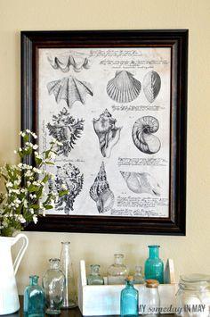 Free printable seashell botanical print featured on Ella Claire