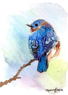 ACEO Limited Edition   Perching on the edge by annalee377 on Etsy, $4.00
