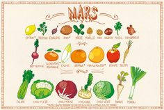 Fruits & Veggies in season in March / Les Fruits & légumes du mois de mars Healthy Food Choices, Healthy Recipes, Healthy Cooking, Healthy Eats, Healthy Foods, Zero Waste Home, Photo Fruit, Chou Rave, Garlic Extract