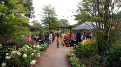 Dolores Park, Plants, Travel, Viajes, Destinations, Plant, Traveling, Trips, Planets