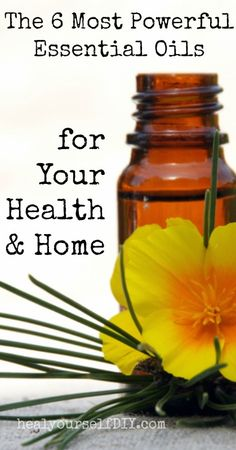The 6 Most Powerful Essential Oils for Your Health and Home | www.healyourselfDIY.com