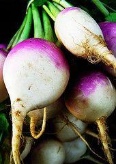 Fermented turnips, radishes, beets, etc.