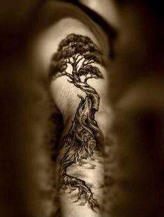 100 Brilliant Tree Tattoo Designs & Meanings