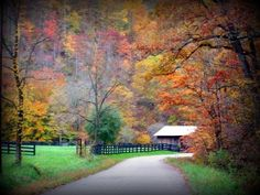 Who says the East Kentucky mountains aren't beautiful??? Hollybush (Knott County), Ky