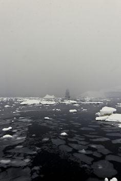 A Voyage To Antarctica By René Koster – iGNANT.de