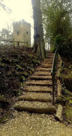 Stainborough Castle, Barnsley, England (by woodytyke on Flickr)