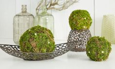 Make moss balls yourself - Whether as an autumn table decoration, as a flower replacement for the empty flower boxes in winter - Banquet Table Decorations, Banquet Tables, Decoration Table, Autumn Table, Winter Table, Fall Crafts, Diy And Crafts, Christmas Crafts, Women Life