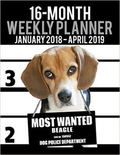 """2018-2019 Weekly Planner - Most Wanted Beagle: Daily Diary Monthly Yearly Calendar Large 8.5"""" x 11"""" Schedule Journal Organizer (Dog Planners 2018-2019)2018-2019 Weekly Planner for Dog lovers - Beagle lovers in particular! Adorable Most Wanted Beagle image graces the cover of this cute engagement calendar. Popular easy to use planner format shows a week-at-a-view to help keep you organized 7 days at a time. Calendar/planner covers 16 months (January 2018 -- April 2019)"""