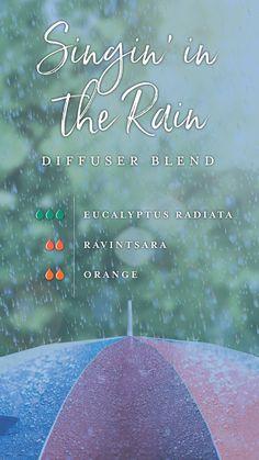 Singin' in the Rain Essential Oil Diffuser Blend - Inspired by Spring Eucalyptus Radiata, Ravintsara, Orange
