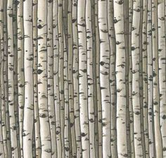 The contrasting nature of birch bark has been used in fiber arts as well as other contemporary crafts. Modern Quilt Patterns, Tree Patterns, Aspen Trees, Birch Trees, Birch Bark, Fox Quilt, Quilt Art, Tree Quilt Pattern, Neutral Quilt