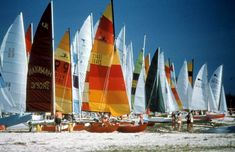 Hobie Cats on Smathers Beach: Key West, Florida by State Library and Archives of Florida, via Flickr