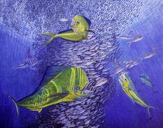 Mahi-Mahi-oil-painting-24-x-30-in-original-mahi-mahi-mahi-dorado-dolphin-se