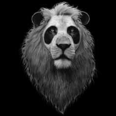 Panda Lion by Design-By-Humans on DeviantArt