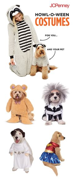 Halloween isn't just for kids—our four-legged friends love to get dressed up, too! Put your pooch in a coordinating dog Halloween costume for a scary good time. We have superhero dog costumes, character dog costumes and more! We guarantee that Fido will be the hit of the Halloween party.