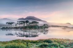 The mists of time - The wonderful Derryclare lough in Connemara with September mists at dawn on our Wild Atlantic Way photo tour. Connemara, Mists, Ireland, Tours, In This Moment, Mountains, Dawn, Nature, Landscapes