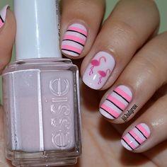 Cute pink flamingos!