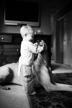 Great Dane. By Erin Vey.