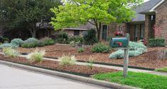 jardin sans entretien devant la maison aménagé avec des graminées ornementales, des arbustes et décoré de paillage décoratif