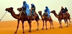 Jinetes De Camellos, Desierto, África