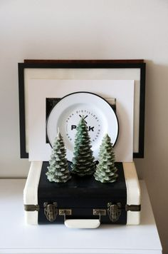 pine tree cluster
